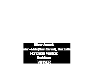 The European Independent Film Award
